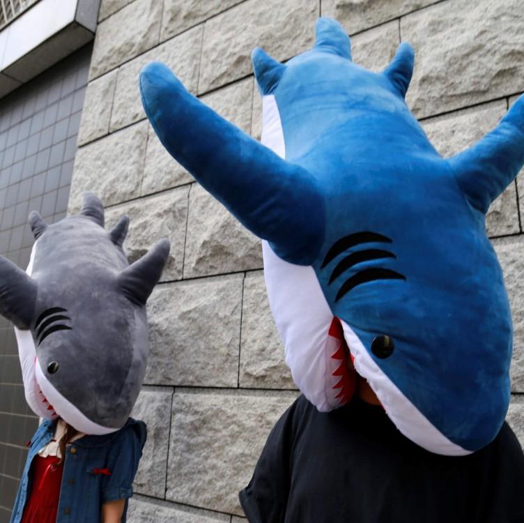 ヴィレヴァンのサメの抱き枕が衝撃