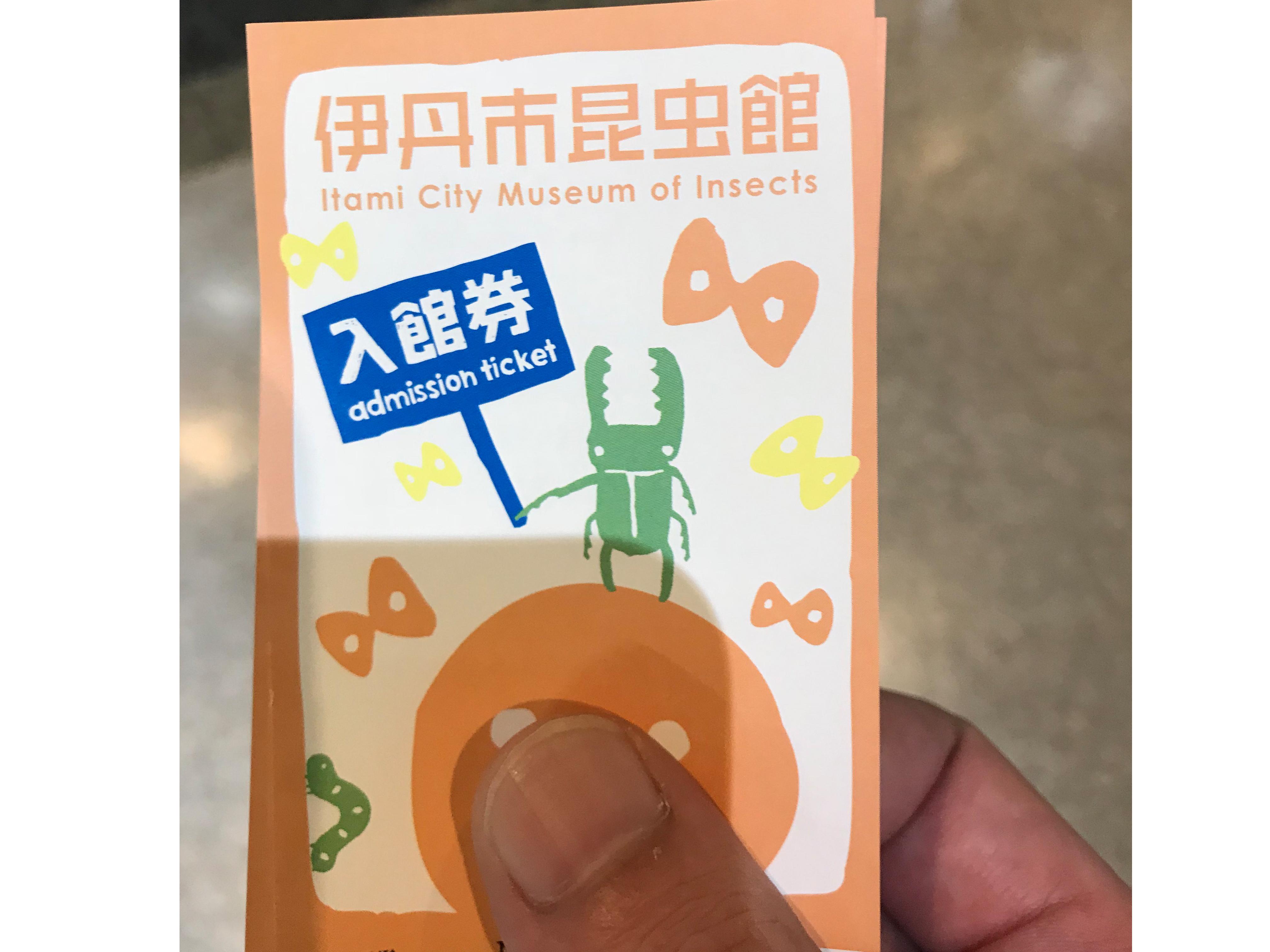 昆虫博物館チケット