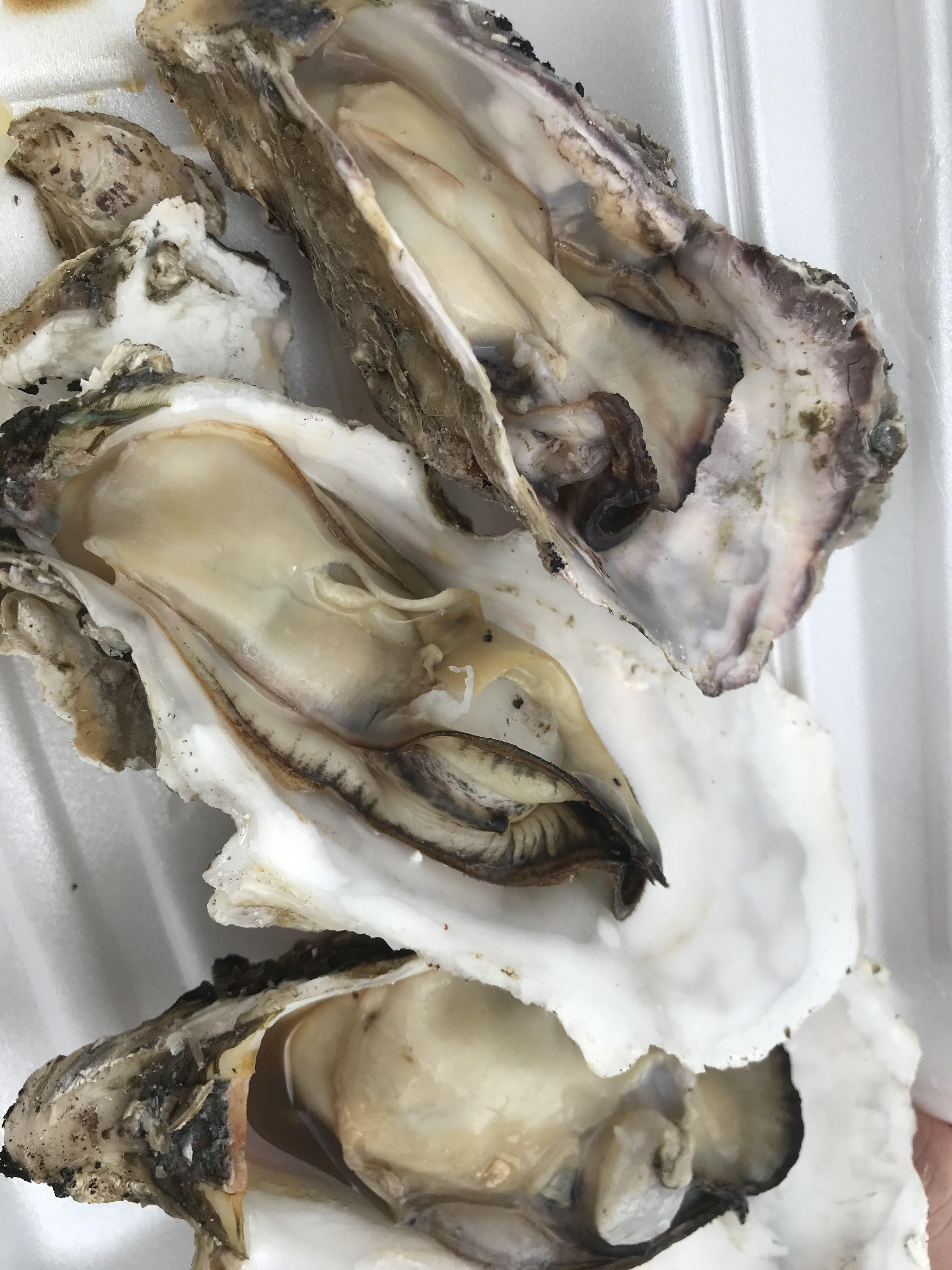 伊丹市 お祭り 大粒の焼き牡蠣