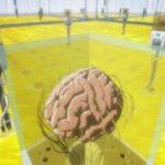 【現実】研究室で培養している『ミニブレイン』から未熟児レベルの人間の脳波が観測された模様!!!