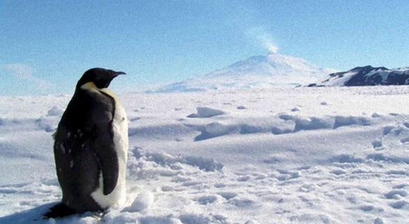 南極大陸とは