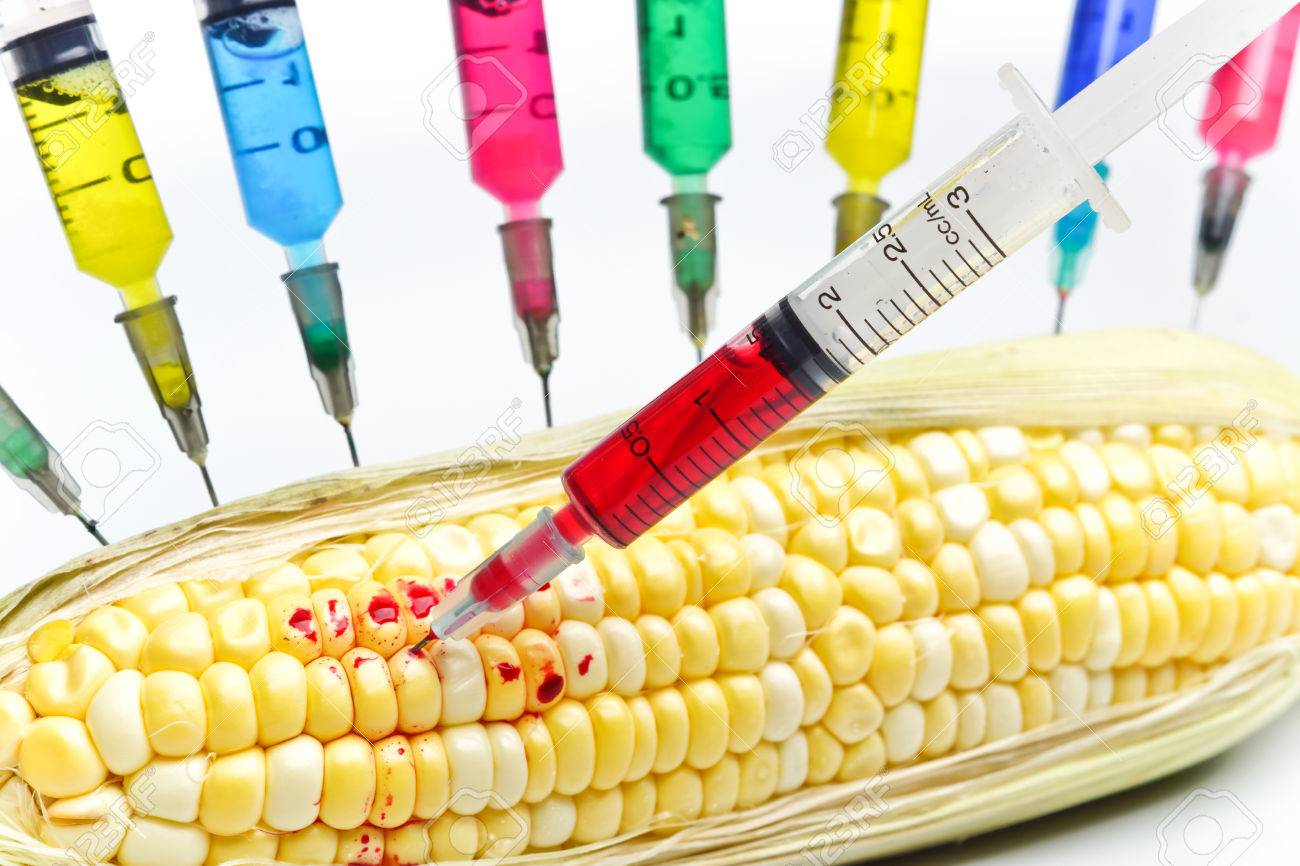 【危機】米国が中国に売りつけようとするも、中国側が買わなかったアメリカ産トウモロコシを日本が全部買ってしまうwww