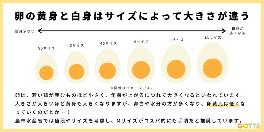 卵はSもLも卵黄の大きさは一緒!?「昔から知ってた」→実は全然違ったと話題にwww