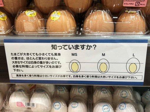 【事実】卵はSもLも卵黄の大きさは一緒!?「昔から知ってた」→実は全然違ったと話題にwww