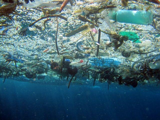 プラスチックごみが環境を悪くしてる